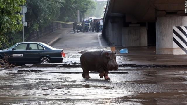 tbilisi-floods