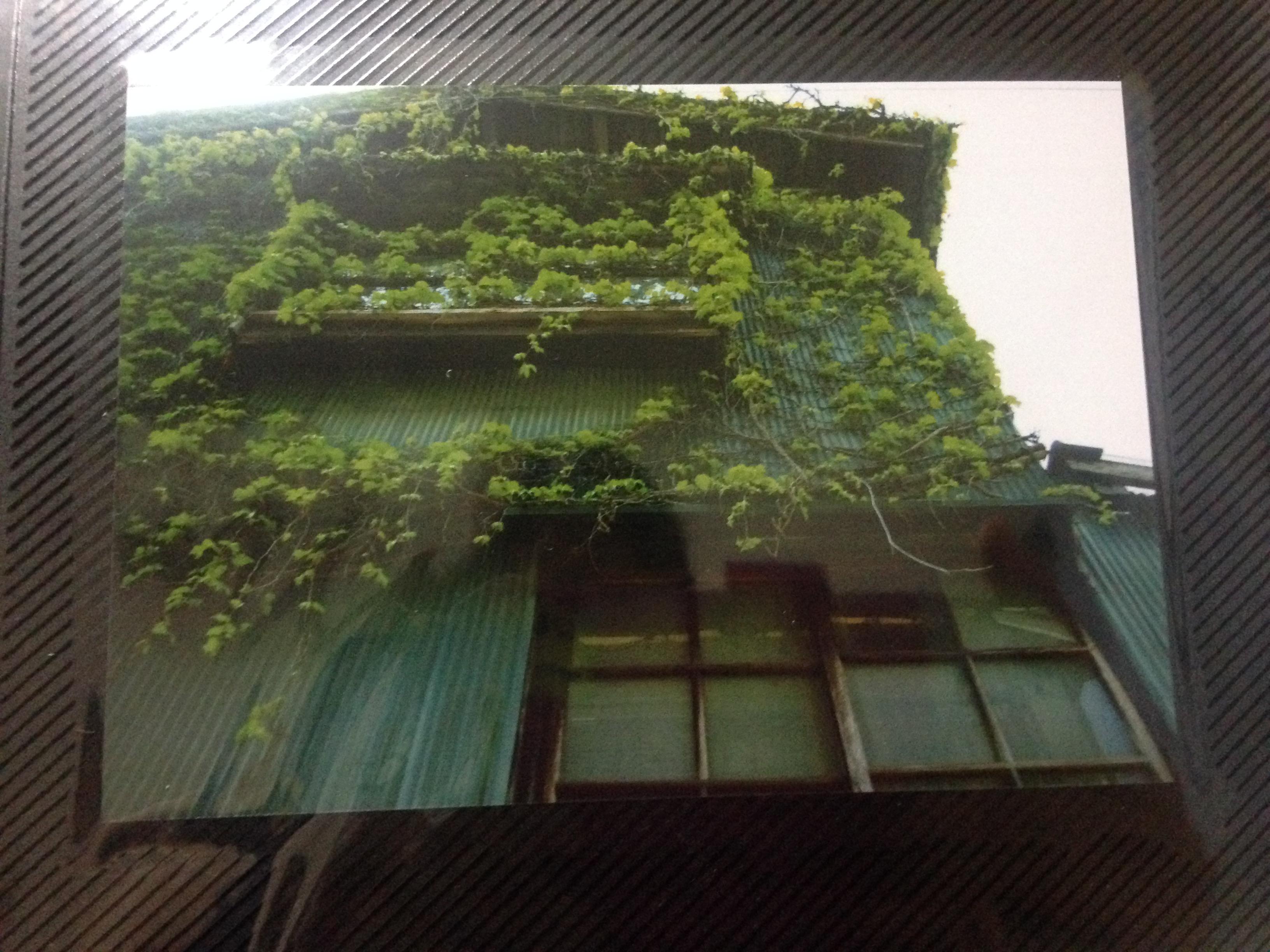 関学時代に撮った写真(2)@摂理の味