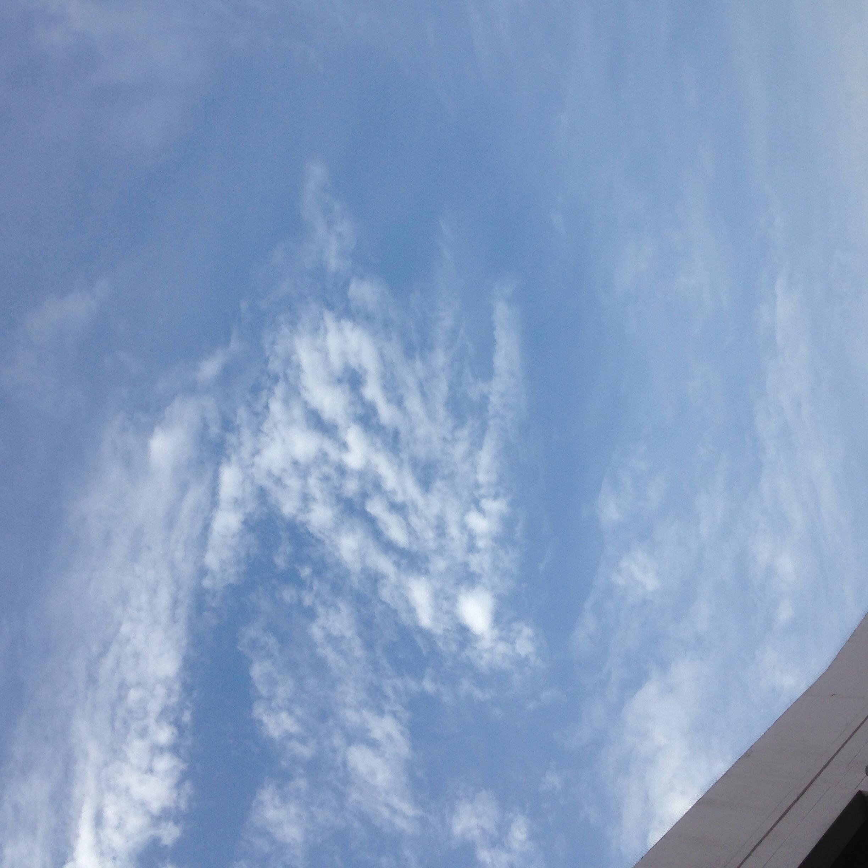 あの雲のように、くるっと転職@摂理の味