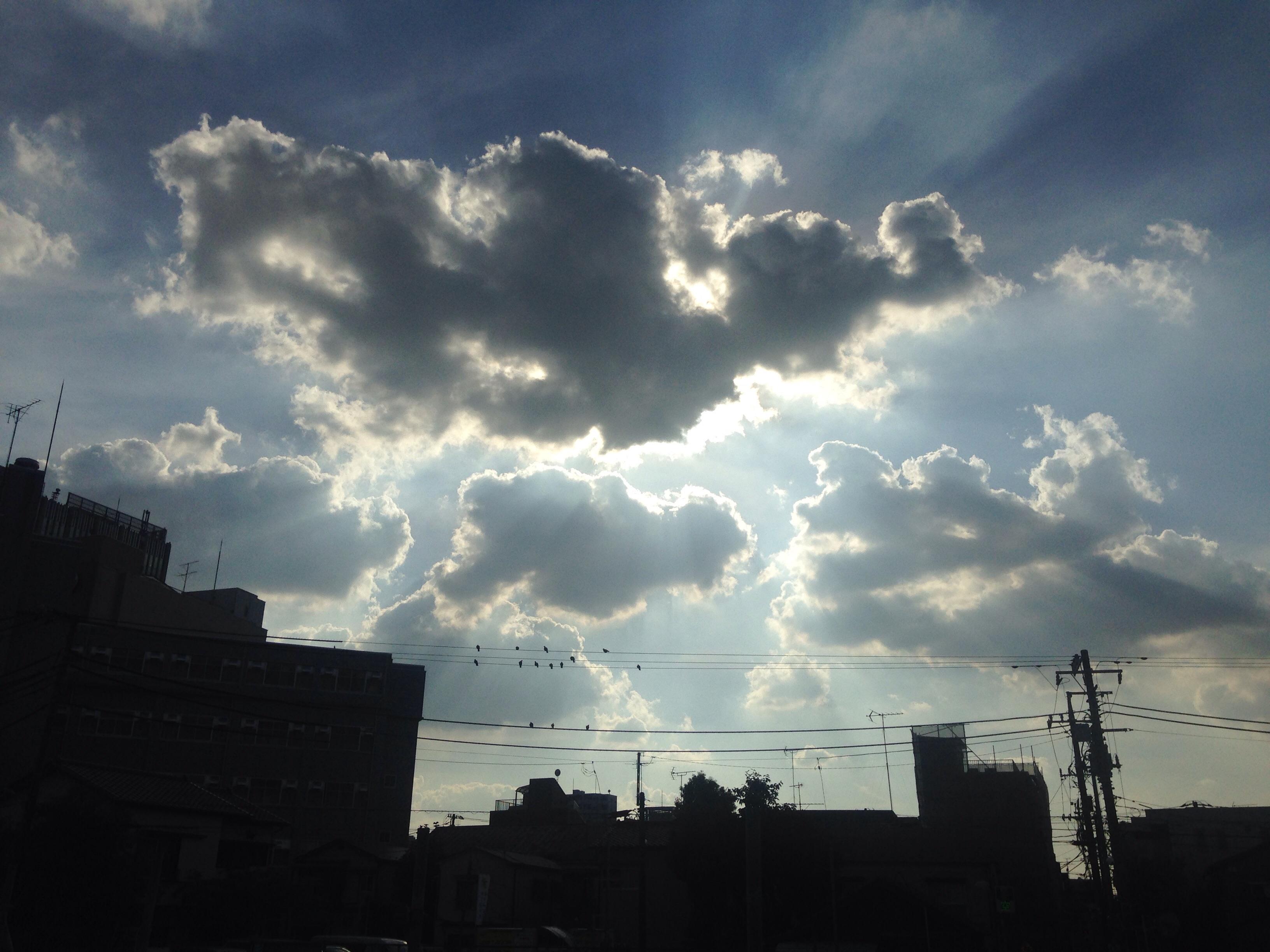 神様の創造物は全部素晴らしい!!@摂理の味
