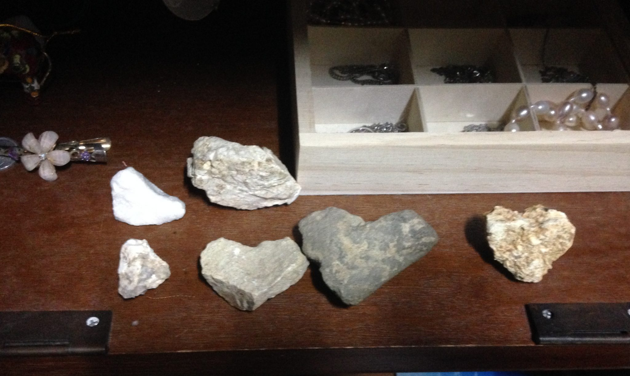 月明洞で拾った形象石コレクション@摂理の味